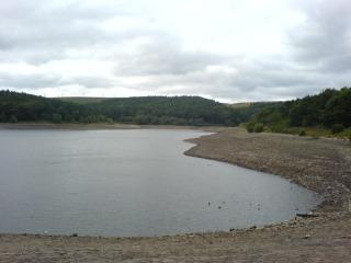 Ogden Water, 2006