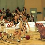 Gerbil basketball