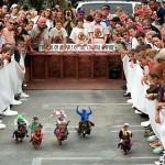 Wiener racing
