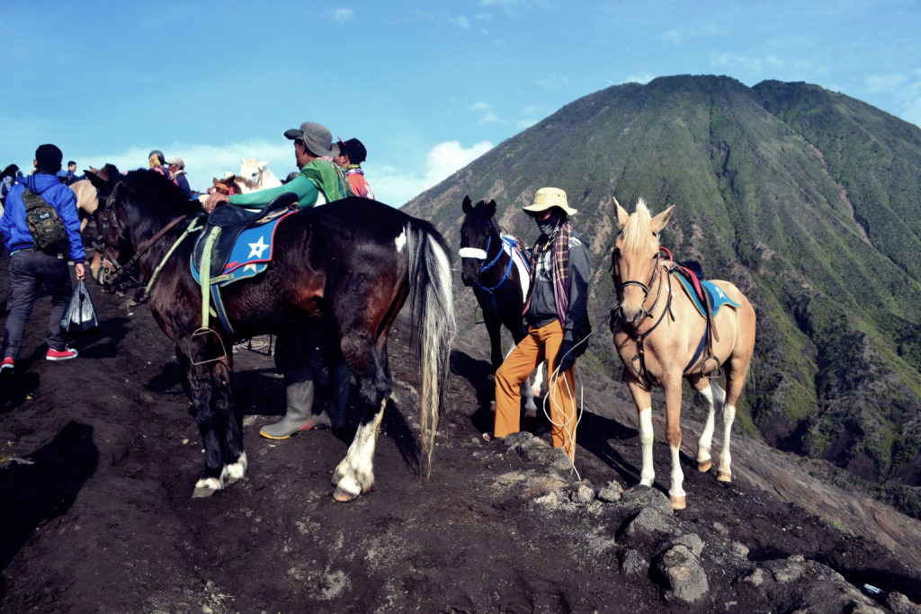 Riders and horses on a mountain